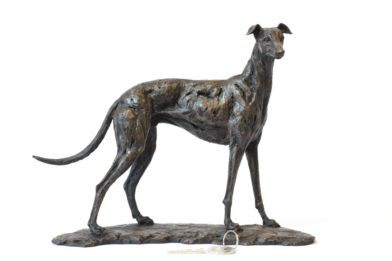 bronze greyhound sculpture by animal sculptor tanya
