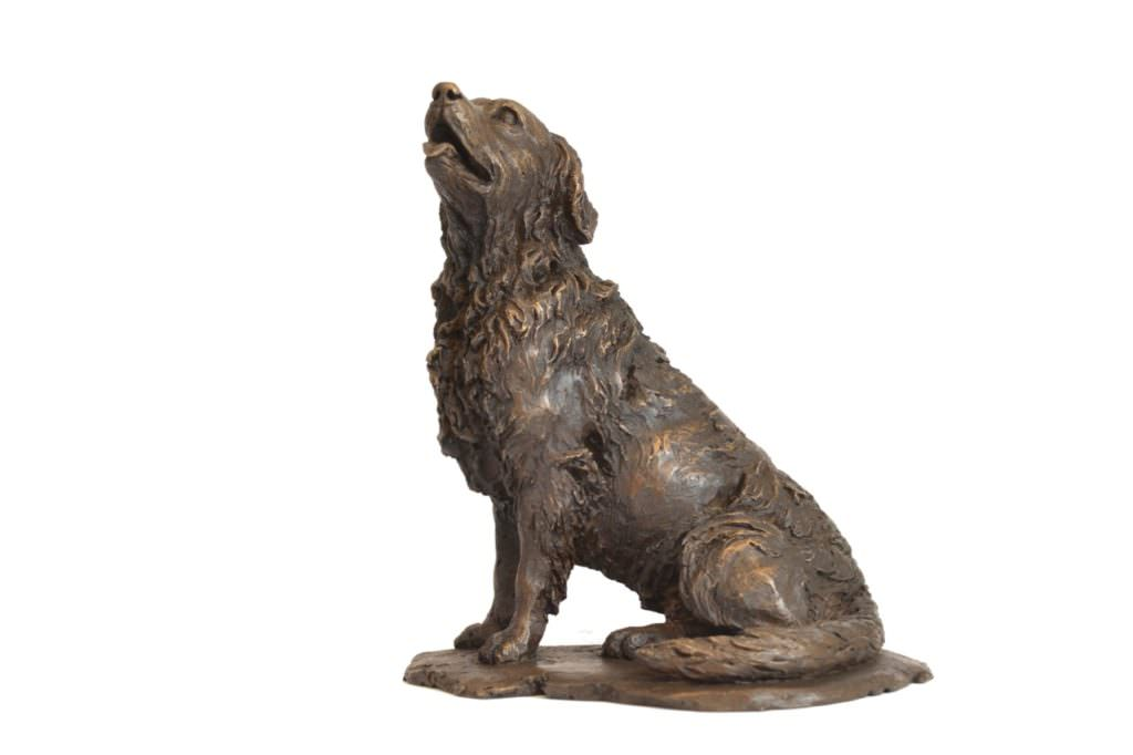 Sitting Retriever Sculpture in Bronze Resin looking up and to the right