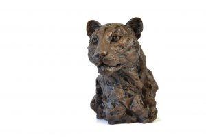 Centre left facing view of Leopard Portrait