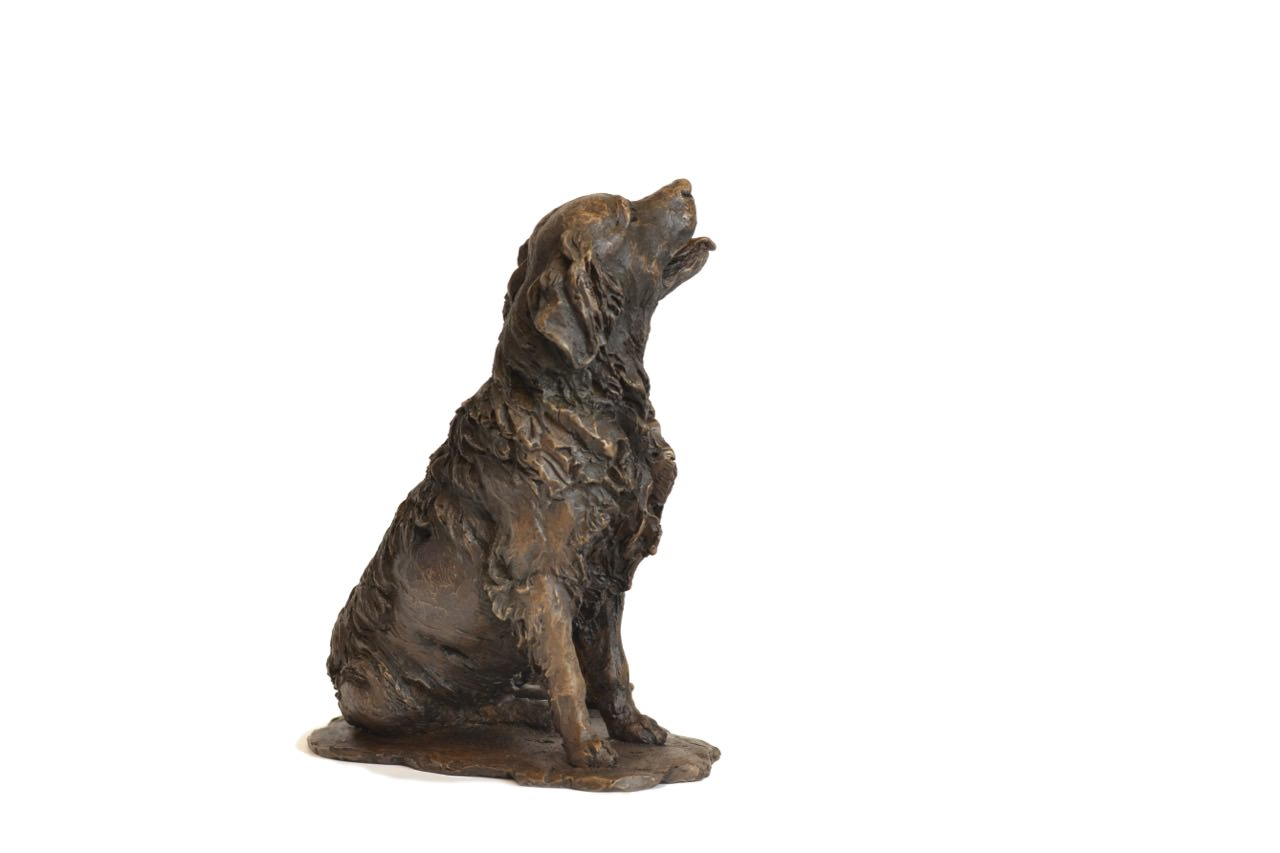 bronze sitting retriever sculpture by animal sculptor