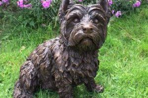 Sitting West Highland Terrier Outdoor