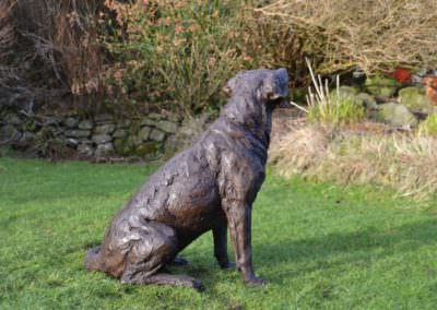 Labrador looking up 5 - Tanya Russell Sculpture