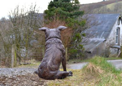 Border Collie cross sitting 4 - Tanya Russell Sculpture