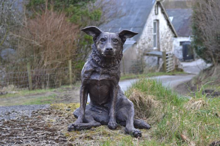 Border Collie cross sculpture