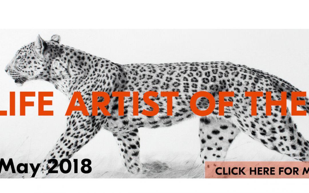 Wild Boar sculpture chosen for Wildlife Artist of the Year Show 2018