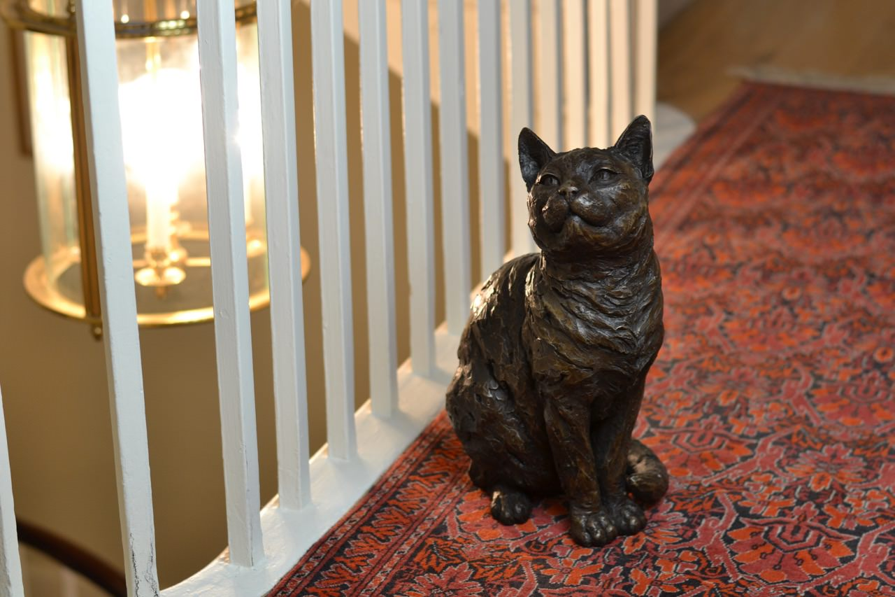 bronze sitting cat sculpture by animal sculptor tanya
