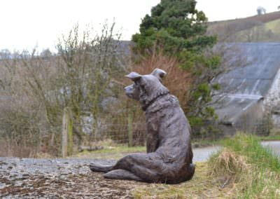 Border Collie cross sitting 5 - Tanya Russell Sculpture