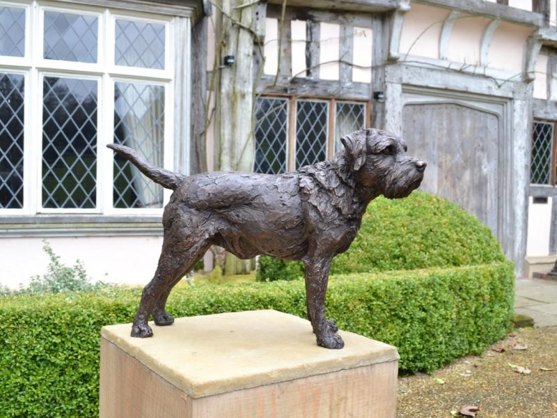 Border Terrier Standing Bronze Sculpture image, dog statue sculpted by Tanya Russell