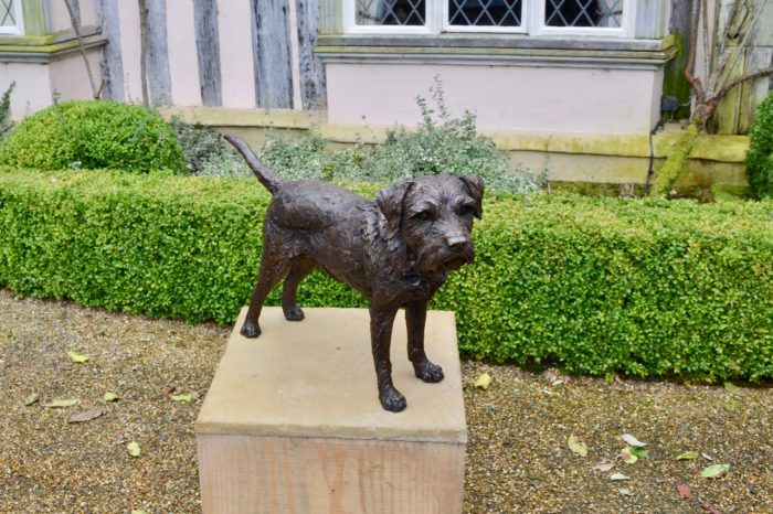 Border Terrier Standing Bronze Sculpture image, dog statue sculpted by Tanya Russell, view from above