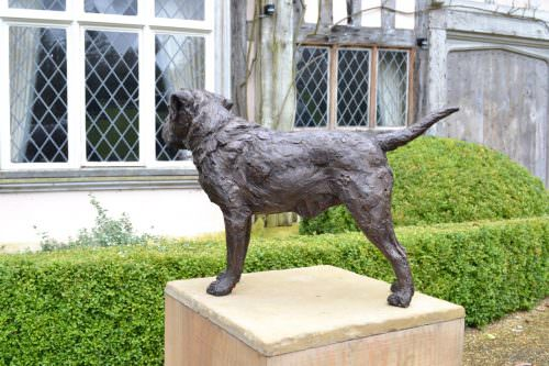 Border Terrier Standing Bronze Sculpture image, dog statue sculpted by Tanya Russell, facing the house