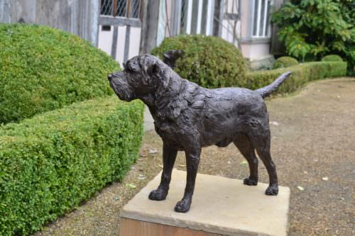 Border Terrier Standing Bronze Sculpture image, dog statue sculpted by Tanya Russell, looking forward