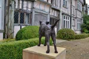 Border Terrier Standing Bronze Sculpture image, dog statue sculpted by Tanya Russell, from behind