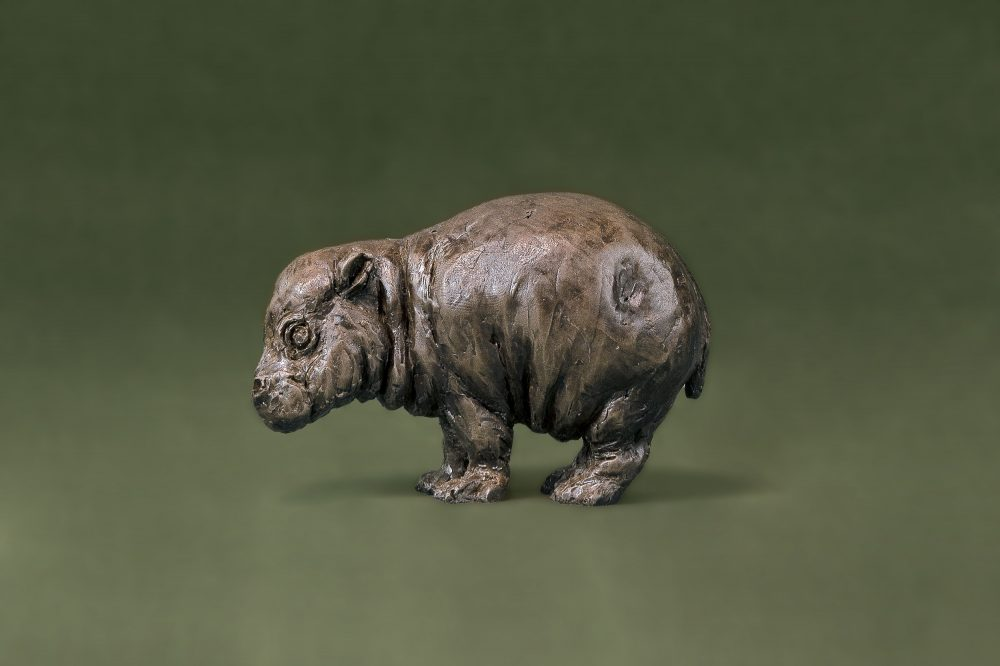 Baby Hippo Side
