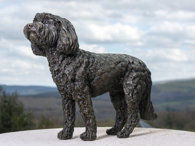 Standing Cockerpoo Statue
