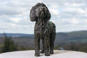 Cockerpoo Statue