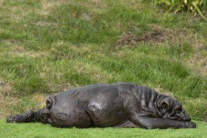 English Bulldog Bronze Resin