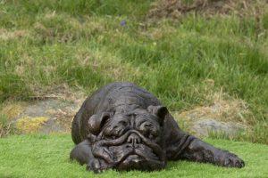 English Bulldog Garden Sculpture