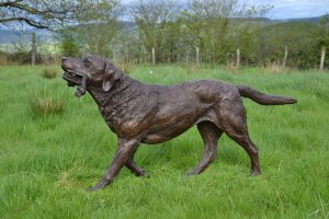 Bronze Labrador playing