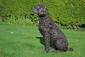 Bronze Labradoodle Sculpture