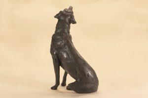 bronze labrador dog