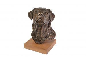 bronze labrador