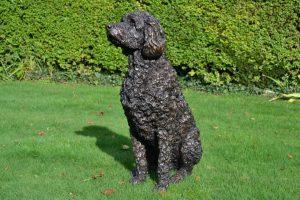 labradoodle dog statue