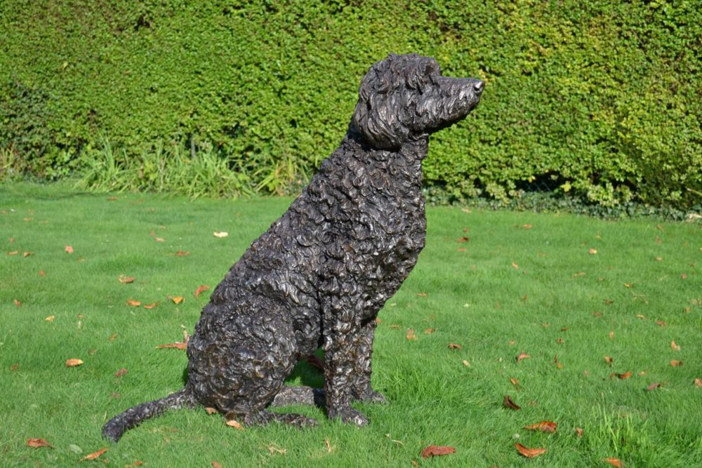Labradoodle statue