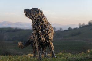 life size bronze retriever garden sculpture