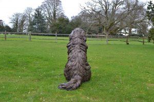 bronze newfoundland statue