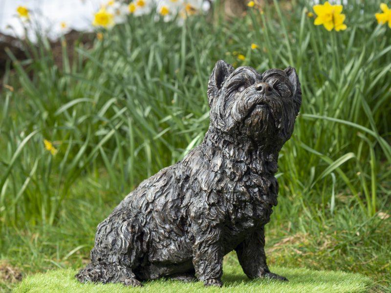 Sitting West Highland Terrier