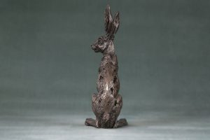 Sitting Hare Back