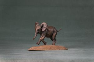 Playing Baby Elephant