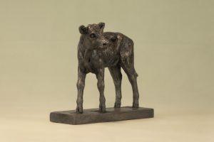 Shorthorn Calf Sculpture