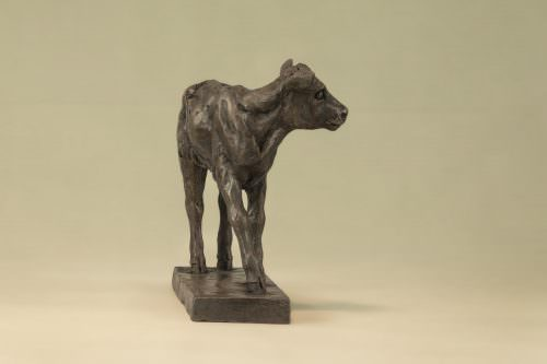 SHORTHORN CALF SCULPTURE