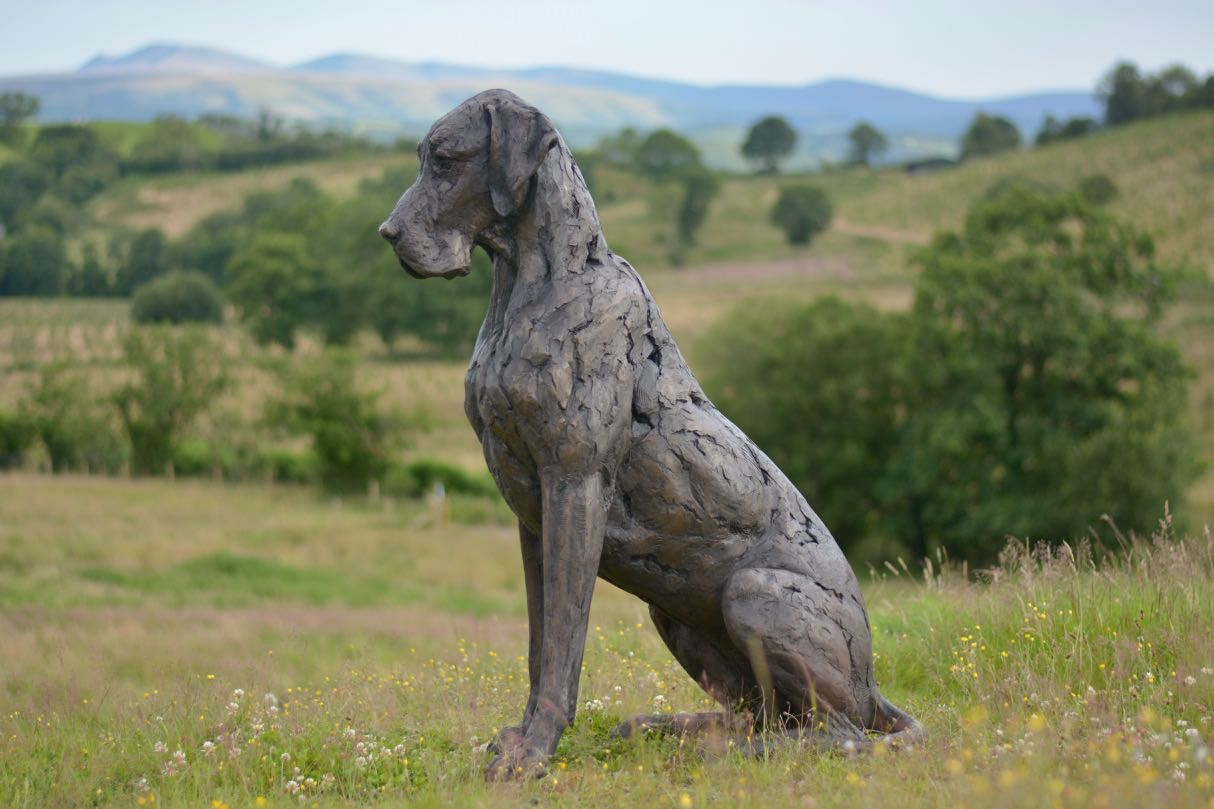 SITTING GREAT DANE SCULPTURE