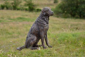 bronze labrador statue