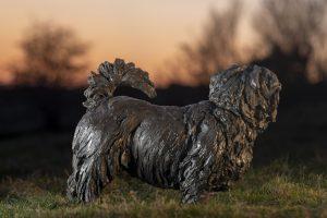 norfolk terrier statue
