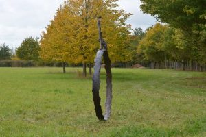 Large Stargazer Ring Man and Dog Outdoor Sculpture