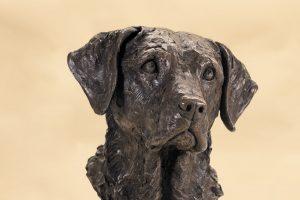 Labrador bronze portrait sculpture